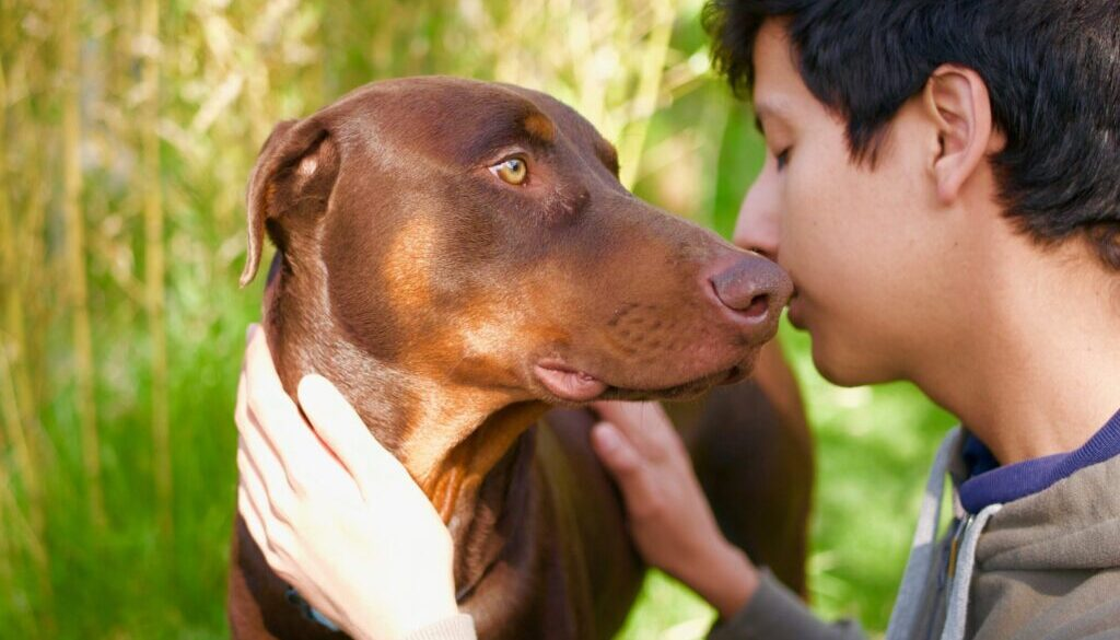 pes přítel člověka